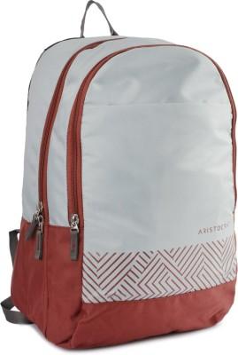 Aristocrat Zing 25 L Backpack(Grey)