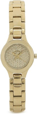 DKNY NY8692I Analog Watch - For Women