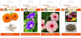 Alkarty Marigold, Morning Glory, Vinca, Zinnia summer flower Seed(20 per packet)