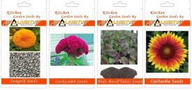 Alkarty Sungold, Cockscomb, Tulsi, Gaillardia summer flower Seed(20 per packet)