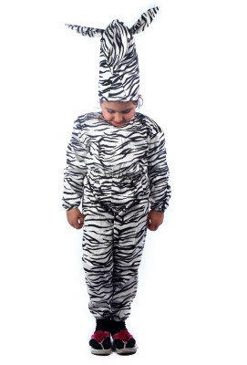 SBD Wild Zebra Fancy dress costume for kids Kids Costume Wear