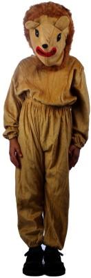 SBD Wild Lion Kids Costume Wear