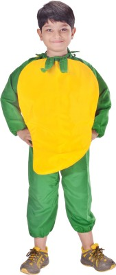 Fancydresswale Mango Kids Costume Wear