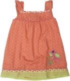 Cherokee Kids Girl's Casual (Orange, Sle...
