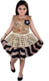 JBN Creation Girl's Midi/Knee Length Par...