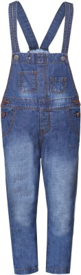 Tales & Stories Dungaree For Boys(Blue)