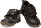 Teddy Toes Boys Velcro Moccasins (Brown)