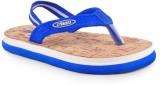 Beanz Boys Slipper Flip Flop (Blue)