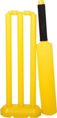 Blt Master Cricket Kit