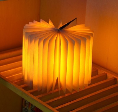 GrabDen GrabDen1013 Table Lamps, Hanging Lights (Pendant Lights) Lamp Shade(Plastic)
