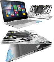 FineArts Tiger Face 4 in 1 Laptop Skin Pack with Screen Guard, Key Protector and Palmrest Skin Combo Set(Multicolor)