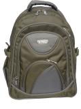 Rajshree 14 inch Laptop Backpack (Green)