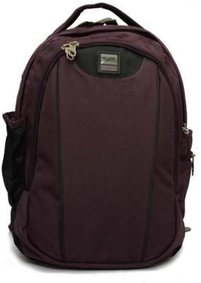 Redan 15 inch Laptop Backpack
