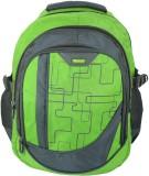 Scholex 15 inch Laptop Backpack (Green)