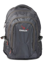 EMBLEM 15.6 inch Expandable Laptop Backpack(Grey)