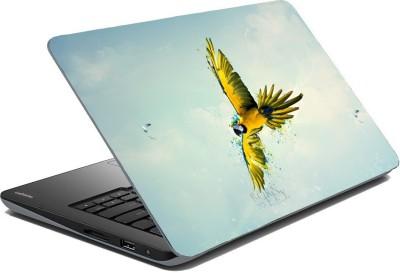 Posterhunt SVshi4860 Parrot Laptop Skin Vinyl Laptop Decal
