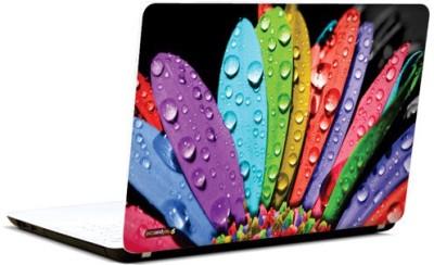 PicsAndYou Rainbow Rays Vinyl Laptop Decal 15.6
