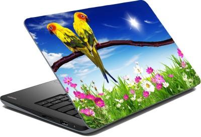 Posterhunt SVshi4843 Parrot Laptop Skin Vinyl Laptop Decal 14.1