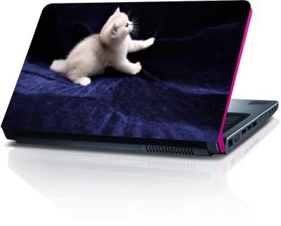 Dstore DELS022181 Vinyl Laptop Decal 15.6