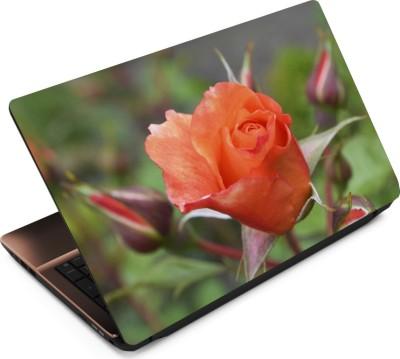 Finest Flower FL50 Vinyl Laptop Decal 15.6