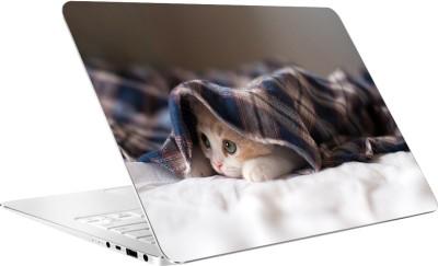 AV Styles Cute Cat Under Blanket By Av Styles Vinyl Laptop Decal 15.6
