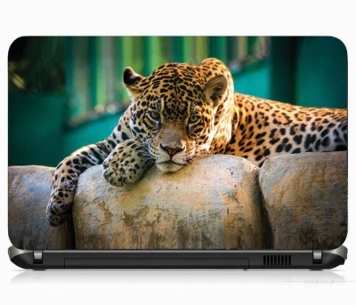 VI COLLECTIONS HUNTER WATCHING IMPORTED VINYL Laptop Decal 15.5