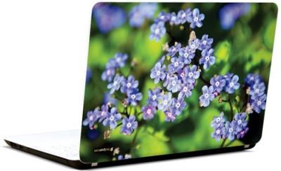 PicsAndYou Purple Flowers In Garden Vinyl Laptop Decal