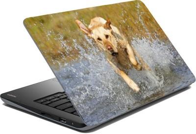 Posterhunt Labrador Retriever Laptop Skin Vinyl Laptop Decal 14.1