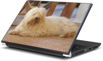 Artifa Cute Dog Amazing Vinyl Laptop Decal 15.6