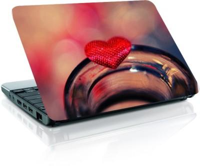 Rockmantra LS 206 Vinyl Laptop Decal 15.6