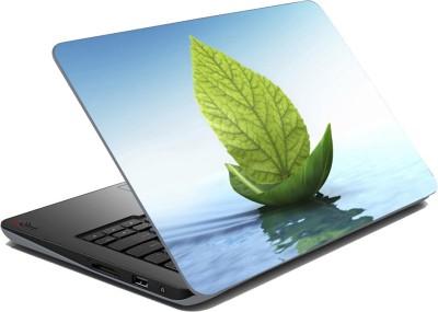meSleep Leaf Boat Vinyl Laptop Decal 15.6