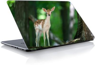 Devendra Graphics Deer Vinyl Laptop Decal 15.6