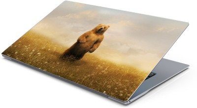 Lovely Collection Giant Bear Vinyl Laptop Decal 15.6