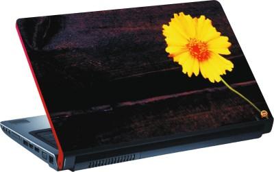DSPBAZAR DSP BAZAR 10641 Vinyl Laptop Decal 15.6