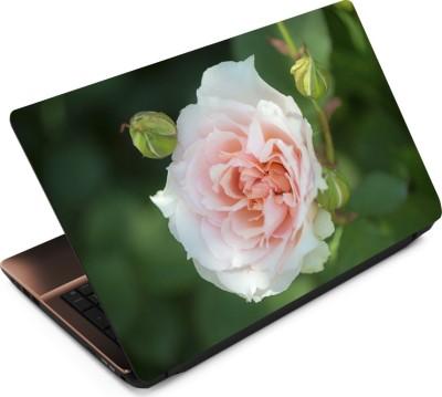 Finest Flower FL60 Vinyl Laptop Decal 15.6