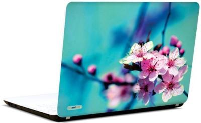 PicsAndYou Exquisite Beauty Vinyl Laptop Decal 15.6