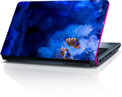 Dstore DELS022184 Vinyl Laptop Decal 15.6