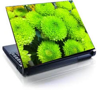 Tati ventures TB35 vinyl Laptop Decal 15