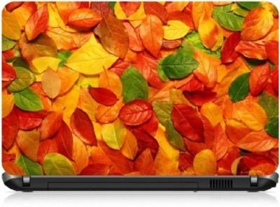 livestash fallen leaves vinyl Laptop Decal