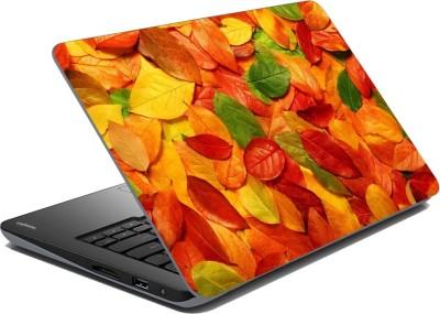 meSleep Colorfull Leaf Vinyl Laptop Decal