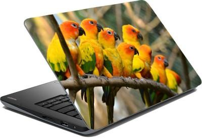 Posterhunt SVPNCA20101 Parrot Laptop Skin Vinyl Laptop Decal
