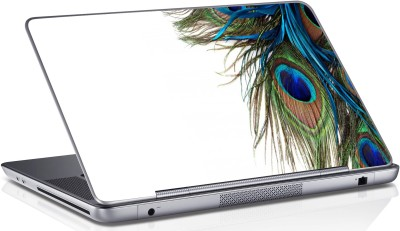 Innovate Peacock Feather 898 Vinyl Laptop Decal 15.6