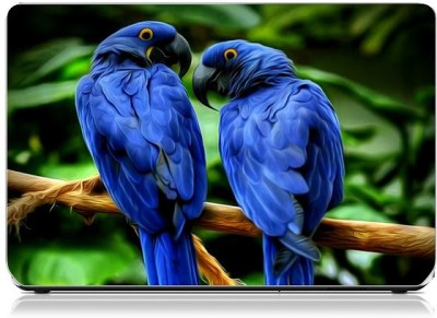 Friendly Formals Rio-Blue Vinyl Laptop Decal