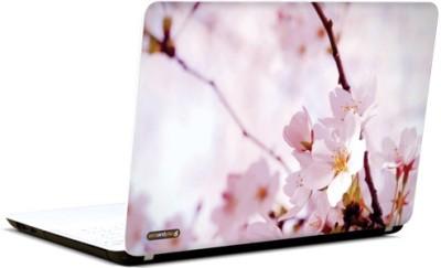 PicsAndYou Divinely Yours Vinyl Laptop Decal