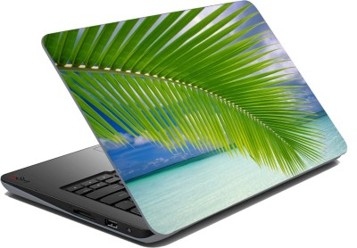 meSleep Palm Tree Leaf Vinyl Laptop Decal 15.6