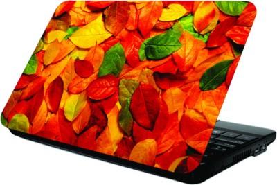 Printland Multi Colored Leaf Skin Vinyl Laptop Decal 13