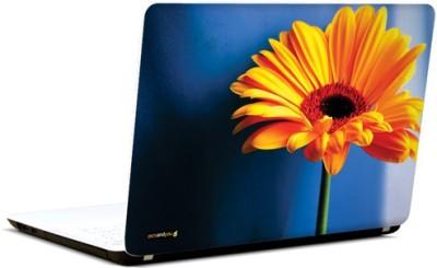 PicsAndYou Sunny Smiles Vinyl Laptop Decal 15.6