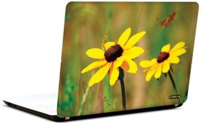 PicsAndYou Sunny Siesta Vinyl Laptop Decal 15.6