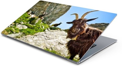Lovely Collection ugly goat Vinyl Laptop Decal 15.6