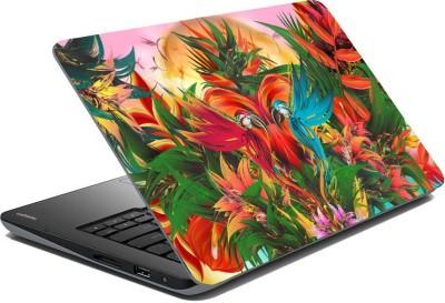Posterhunt SVshi4858 Parrot Laptop Skin Vinyl Laptop Decal 14.1